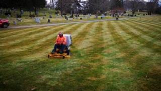Cemetery photo