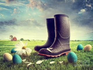 egg and boots